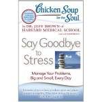Chicken_Soup_Stress_Cover_pic_B